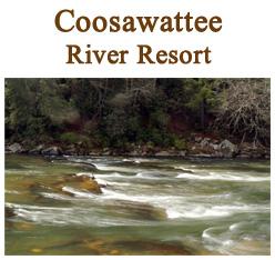 Coosawattee Resort Lots - Ellijay Land For Sale